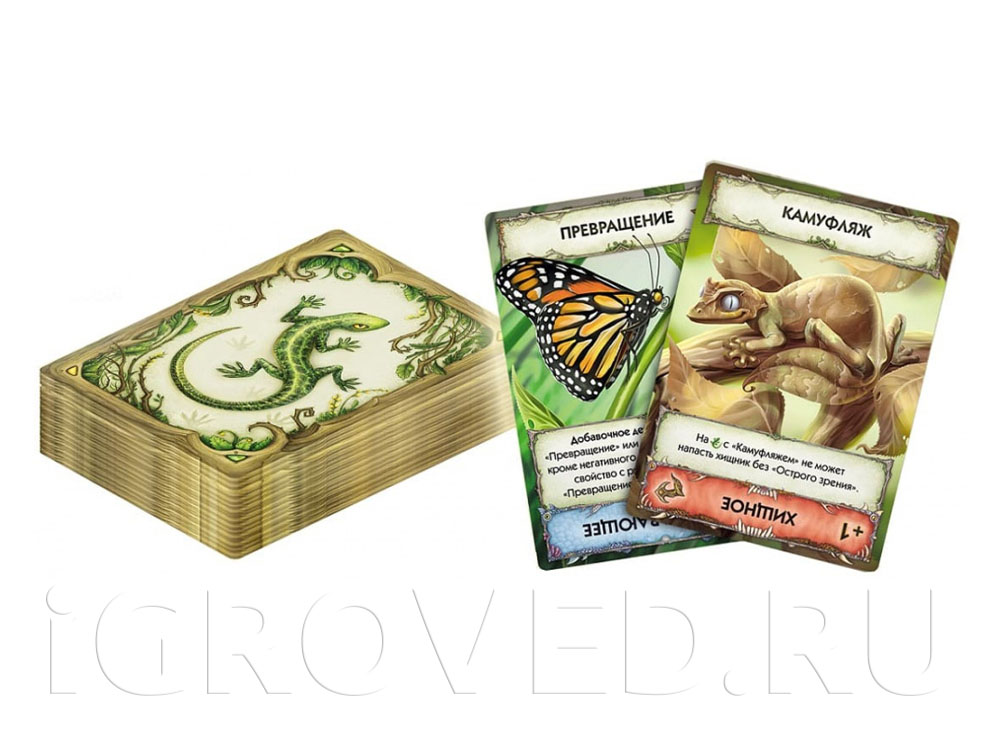 Компоненты настольной игры Эволюция. Новый мир