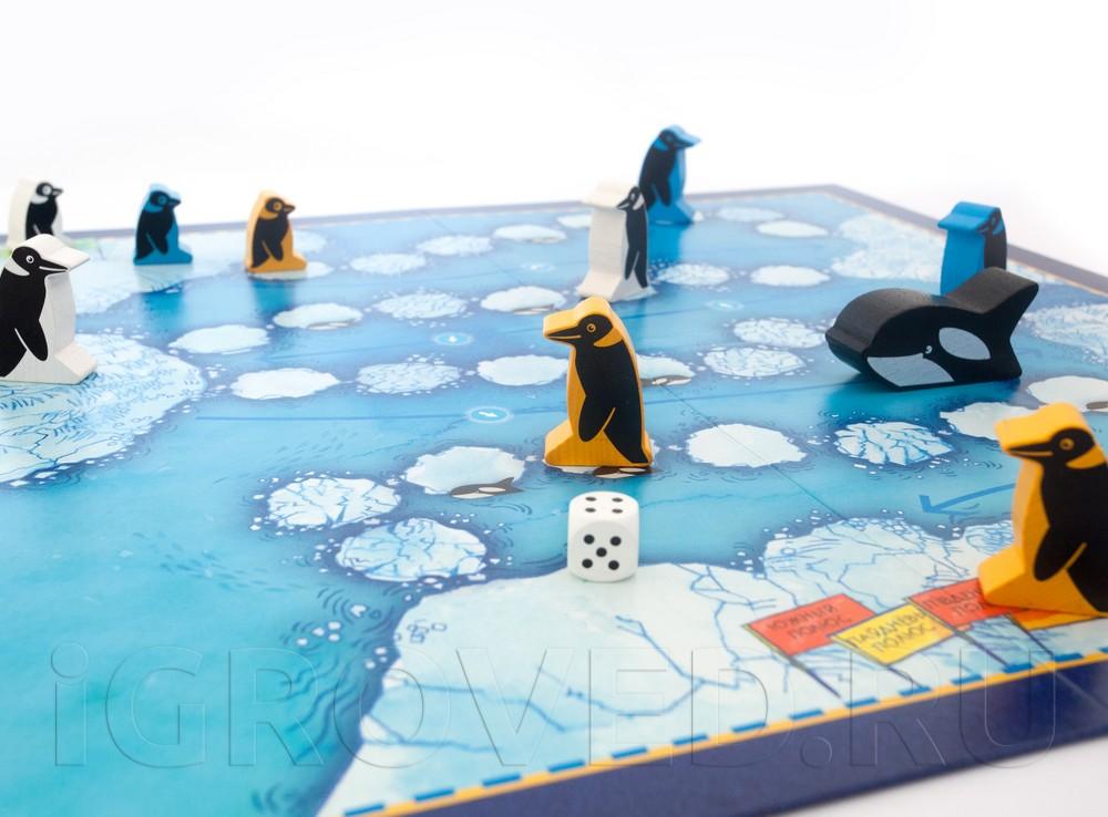 Игровой процесс настольной игры Пинги Понго