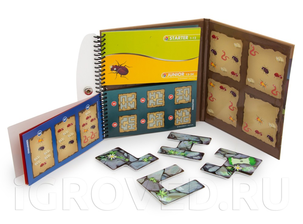 Компоненты настольной игры-головоломки Деловые жуки