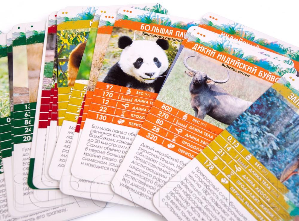 Компоненты настольной игры Секреты Планеты: Животные Азии
