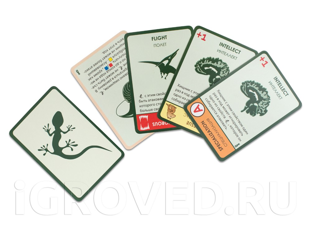 Карточки настольной игры Эволюция. Время летать (дополнение)
