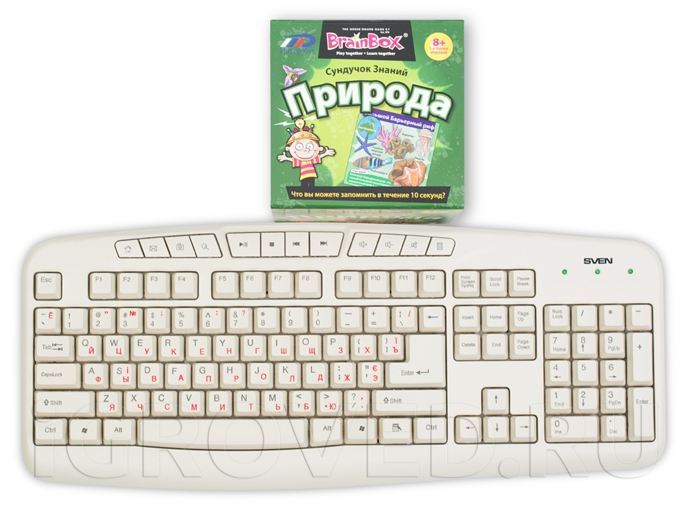 Коробка настольной игры Сундучок знаний: Природа в сравнении с клавиатурой