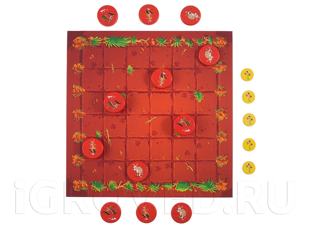 Игровой процесс настольной игры Команда кенгуру (Kang)