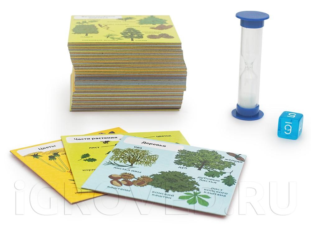 Компоненты настольной игры Сундучок знаний: Мои первые знания
