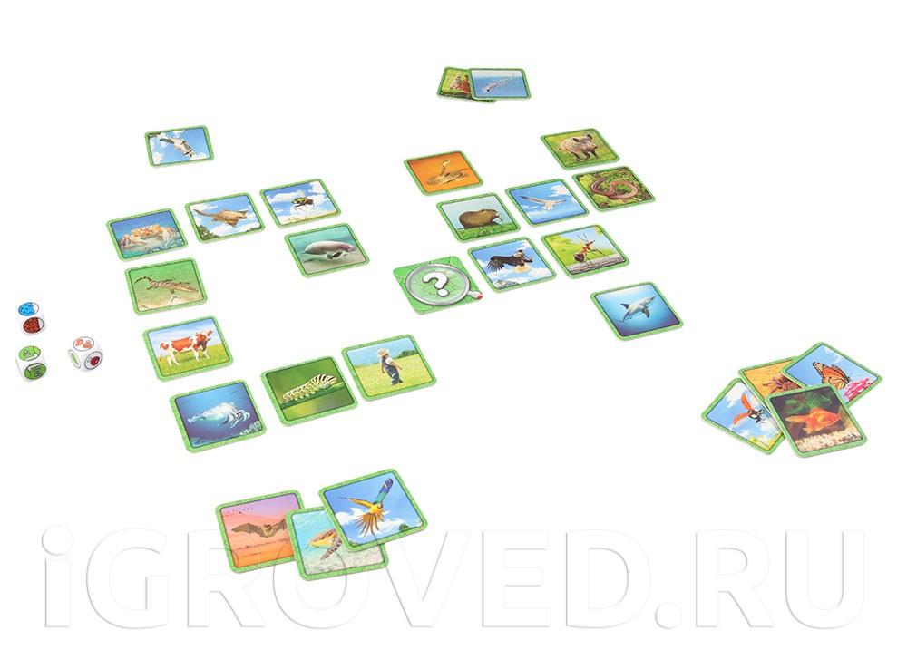Игровой процесс  настольной игры Следопыт (Specific)