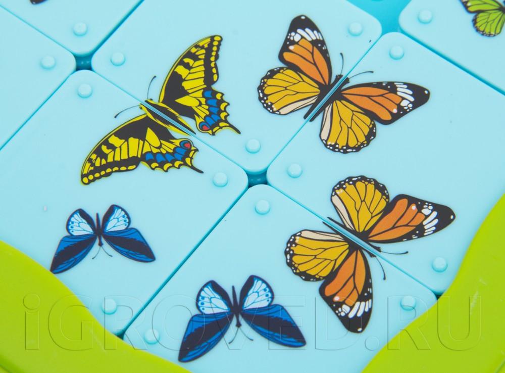 Компоненты  настольной игры-головоломки Бабочки